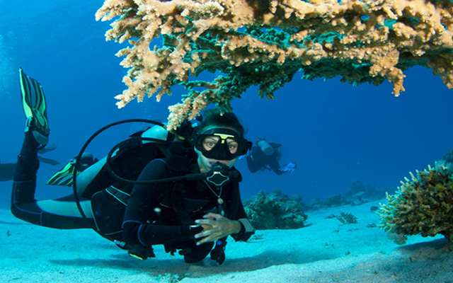 Andaman Activity Packages